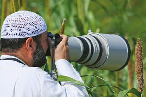 Photographing birds in Kuwait (photo by Mike Pope)